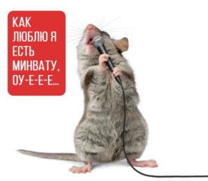 Мышь балдеет от минваты