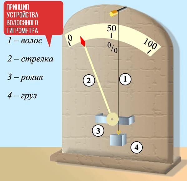 волосяной гигрометр